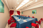 Meeting Room Nettuno